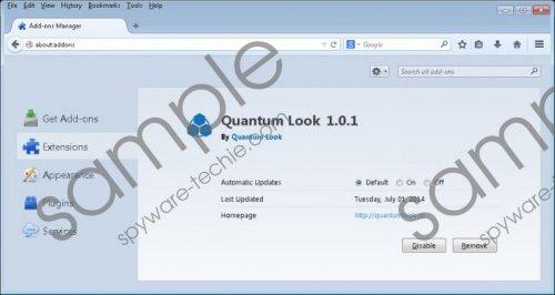QuantumLook