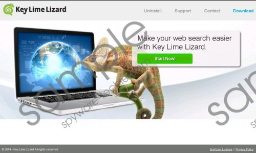 Key Lime Lizard Removal Guide