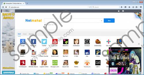 Netmahal.com Removal Guide