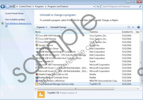 Tiny Download manager Removal Guide