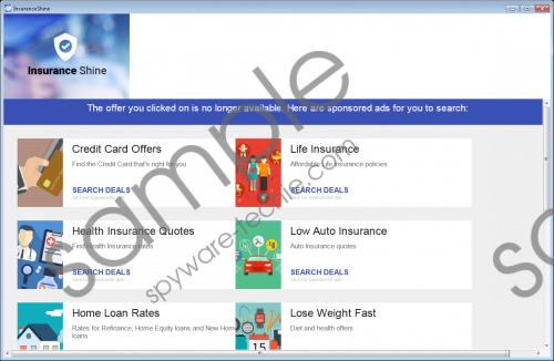 Insurance Shine Removal Guide