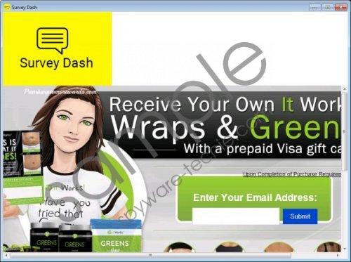 Survey Dash Removal Guide